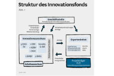 Schema: Struktur des Innovationsfonds